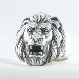 Ring-leeuw--1.JPG