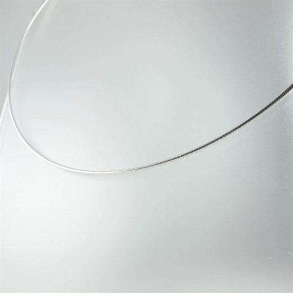 Zilveren-spang--2.JPG